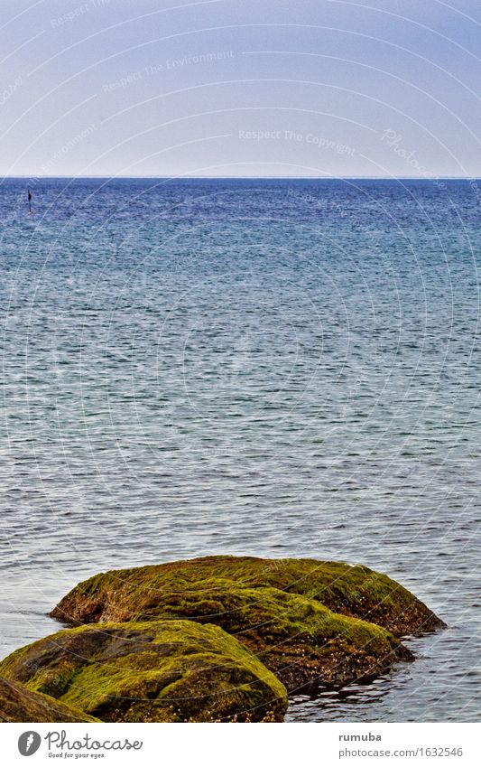 Felsen Meer Himmel Ferien & Urlaub & Reisen Tourismus Freiheit Sonne Strand Wellen Natur Schönes Wetter Nordsee Ostsee Erholung Blick Ferne maritim blau grün