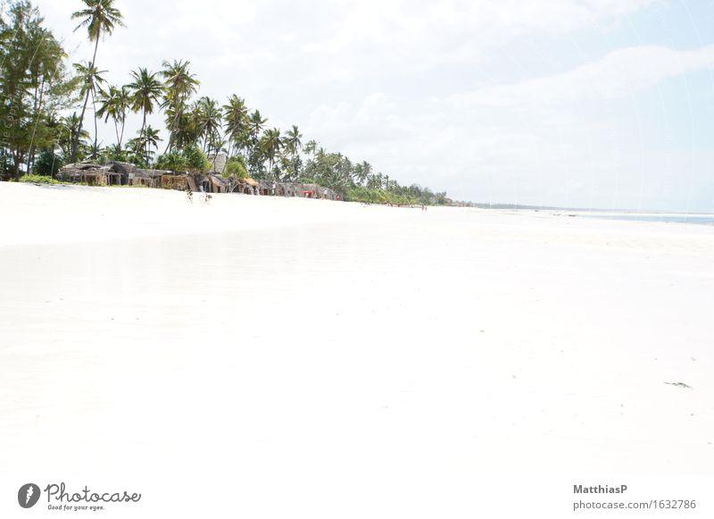 Zanzibar - Weißer Traumstrand in Afrika Ferien & Urlaub & Reisen blau grün Sommer weiß Sonne Meer Erholung Landschaft Strand Umwelt Gefühle außergewöhnlich Freiheit Schwimmen & Baden Tourismus