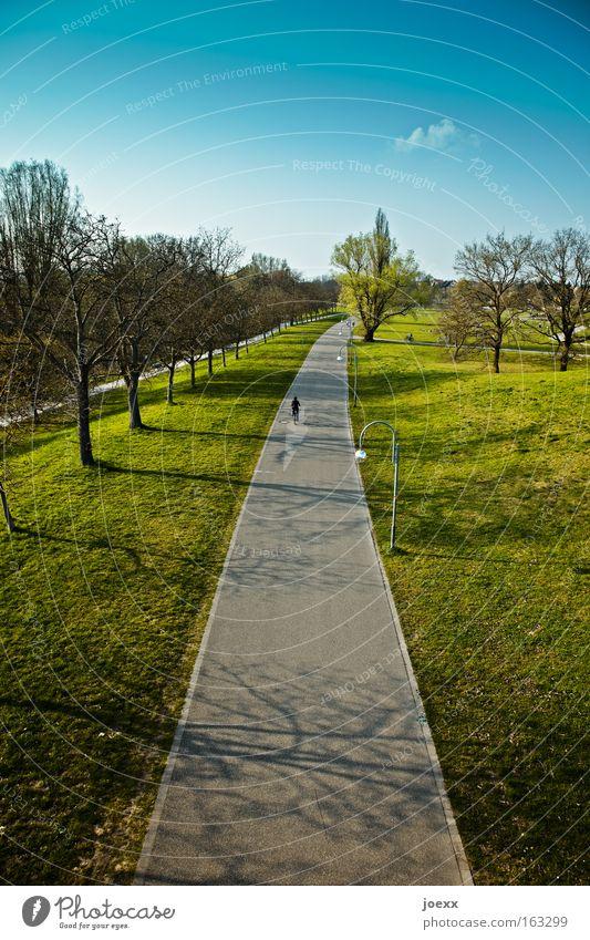 Schönwetterradler Himmel Natur Einsamkeit Erholung Gras Wege & Pfade Frühling Park Zufriedenheit Freizeit & Hobby fahren Schönes Wetter Fahrradfahren Fahrradweg