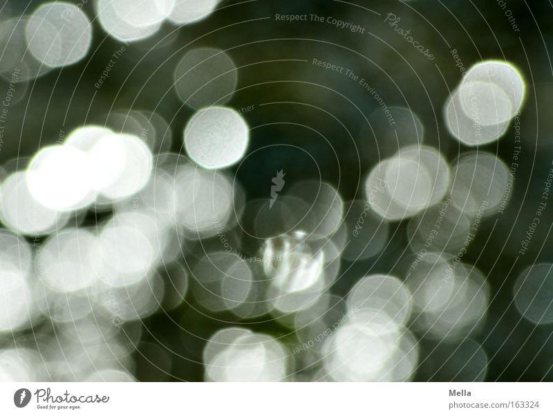 Licht Punkt Lichterscheinung Fleck gefleckt Hintergrundbild Muster grau anthrazit weiß hell grell Unschärfe Farbe