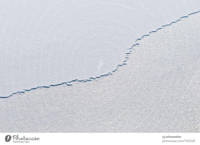broken line weiß Winter ruhig kalt Schnee Eis leer Grenze gefroren Urelemente Natur Oberfläche Schlucht Raureif friedlich