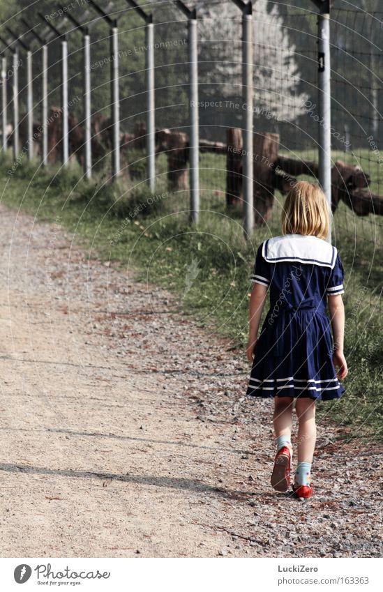Walk the Line Angst Einsamkeit Mädchen Zaun Schatten Traurigkeit Schwäche Trauer Verzweiflung Kind Matrosenkleid