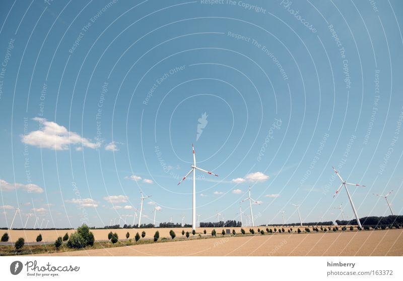 wind of change Natur Himmel Baum Sommer Wolken Landschaft Kraft Feld Wind Umwelt groß Energie Energiewirtschaft Elektrizität Zukunft