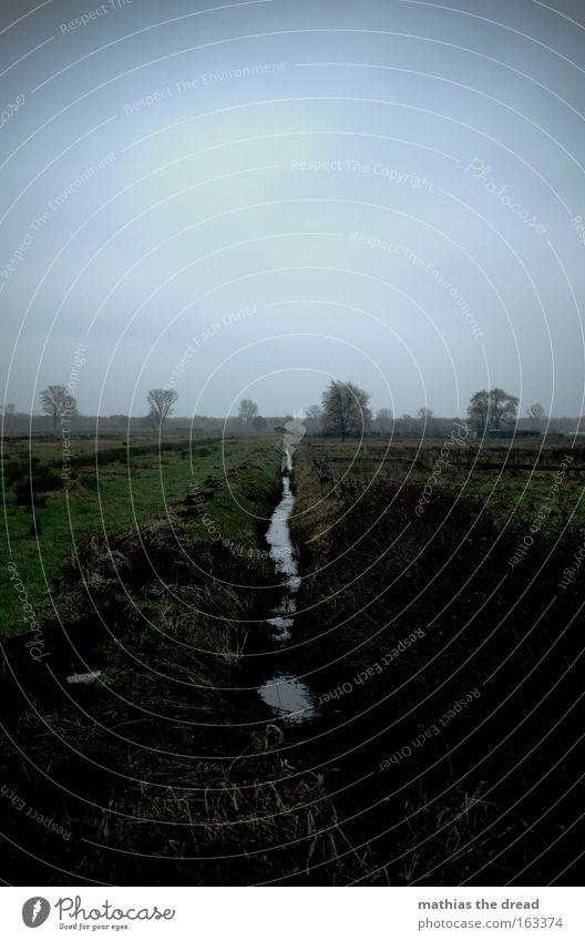 RINNSAL Weide Feld Wiese grün Landschaft Natur Wasser Rinnsal fließen Himmel bedeckt dunkel trist Menschenleer Baum grau Herbst Vergänglichkeit verrinnen