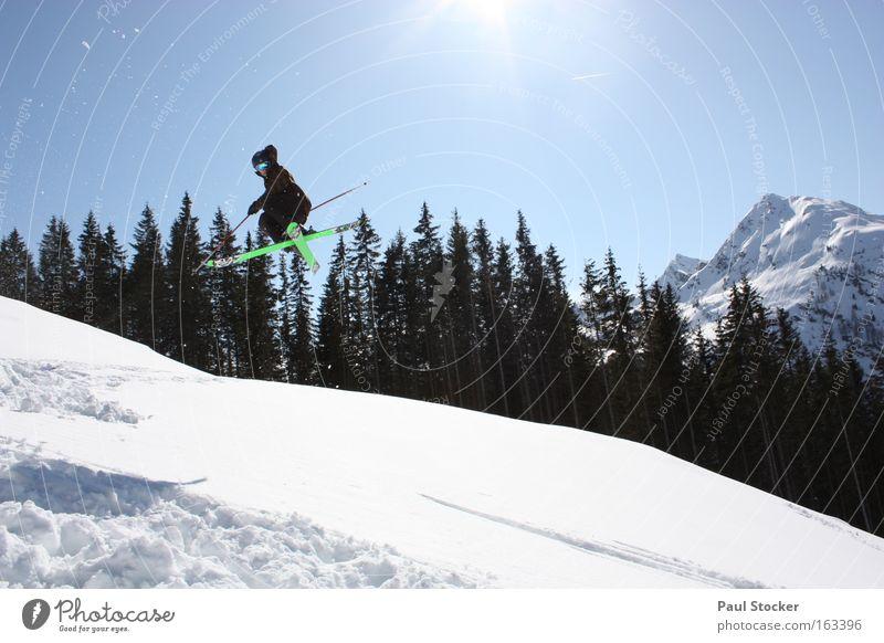 freestyle schön Himmel Baum Sonne blau Winter Sport Schnee springen Spielen Luft Skifahren Freestyle Wintersport Drehung