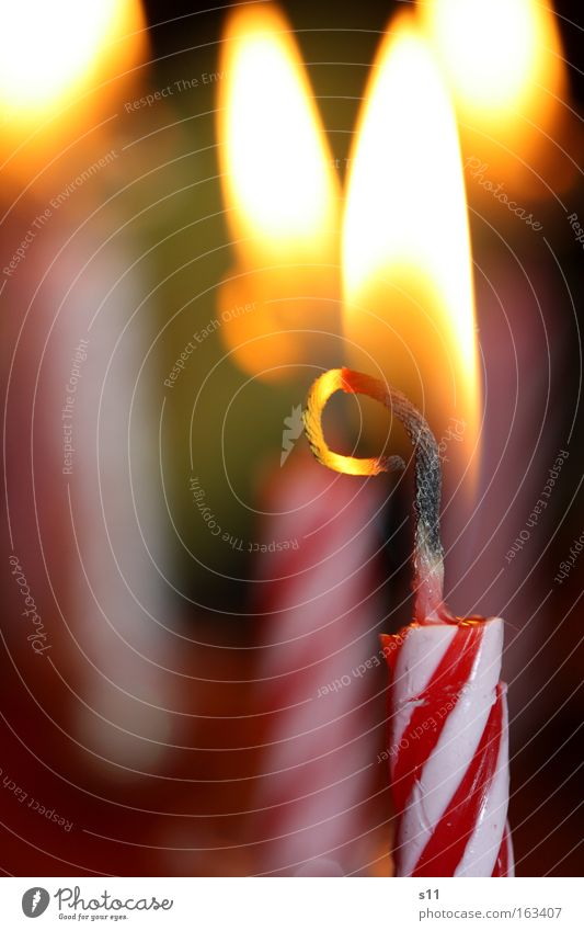 Happy Birthday Geburtstag Feste & Feiern Glück Glückwünsche Kerze Flamme Torte heiß Freude Backwaren Brand Kerzendocht