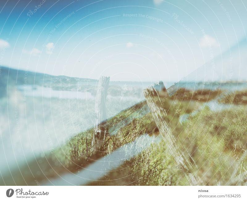 doppelt hält besser Umwelt Natur Landschaft Pflanze Tier Himmel Wolken Schönes Wetter Gras Sträucher Küste Seeufer Flussufer Meer Moor Sumpf Zaun Holz