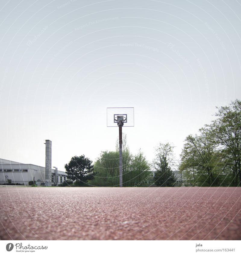 revanche Basketball Sport Korb Freizeit & Hobby Schulsport Sportveranstaltung Gegner Erfolg Sportplatz Ballsport Verkehrswege Spielen Freiwurf