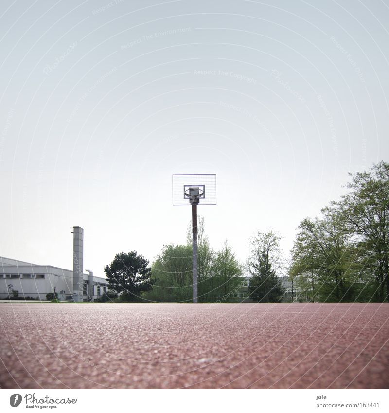 revanche Sport Spielen Erfolg Freizeit & Hobby Verkehrswege Sportveranstaltung Korb Basketball Schulsport Ballsport Gegner Sportplatz Freiwurf