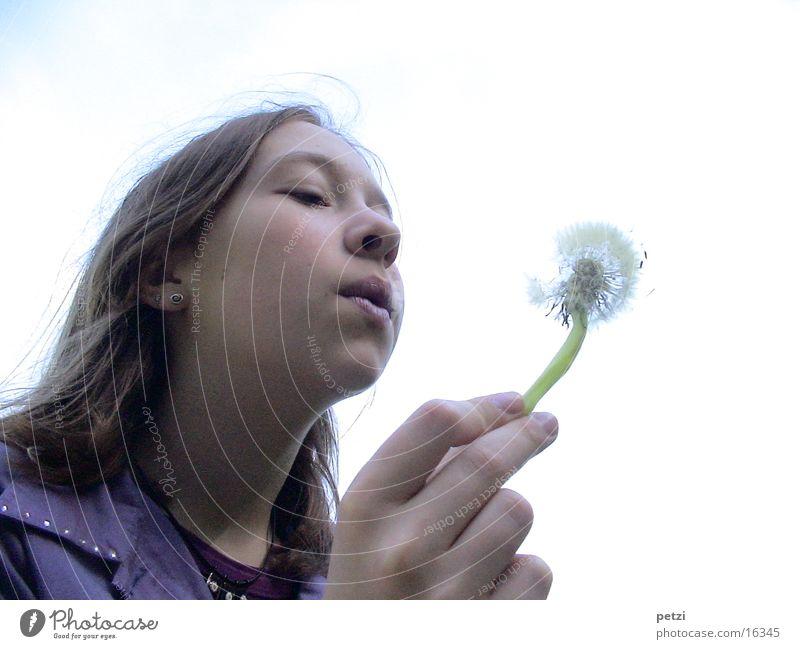 Flieg... Kind Hand Gesicht Wind Löwenzahn blasen Samen