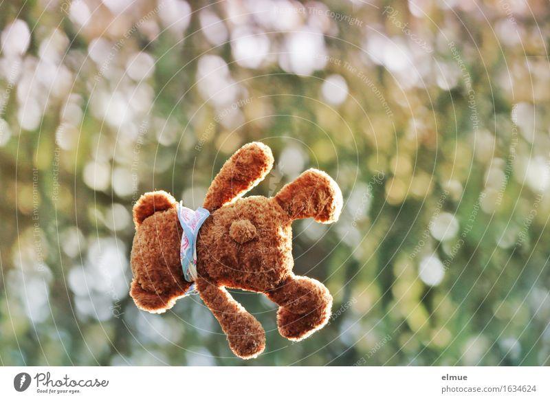 Teddy Per als Wirbelwind Spielen Ferien & Urlaub & Reisen Natur Park Teddybär Stofftiere Flugzeug Schwerkraft Bewegung fliegen springen kuschlig oben sportlich