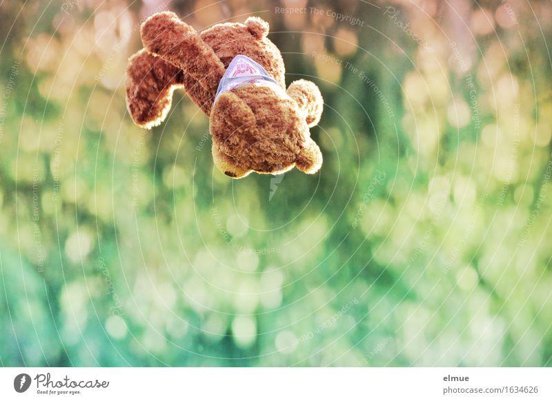 Teddy Per im Höhenflug Spielen Freiheit Trampolin Natur Teddybär fliegen Flugangst Bewegung sportlich Fröhlichkeit kuschlig niedlich mehrfarbig Freude Glück
