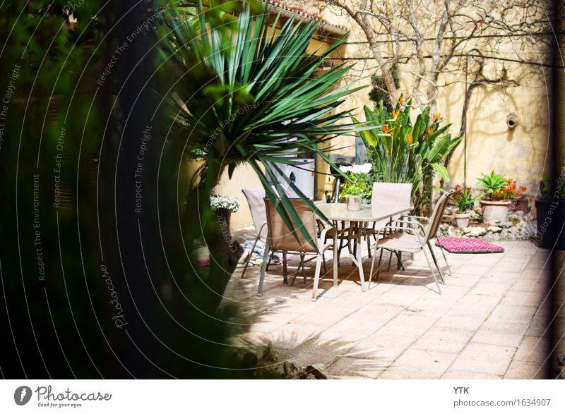 Terrasse Freizeit & Hobby Häusliches Leben Wohnung Traumhaus Dekoration & Verzierung Natur Sommer Schönes Wetter Pflanze Baum Kleinstadt Stadtrand