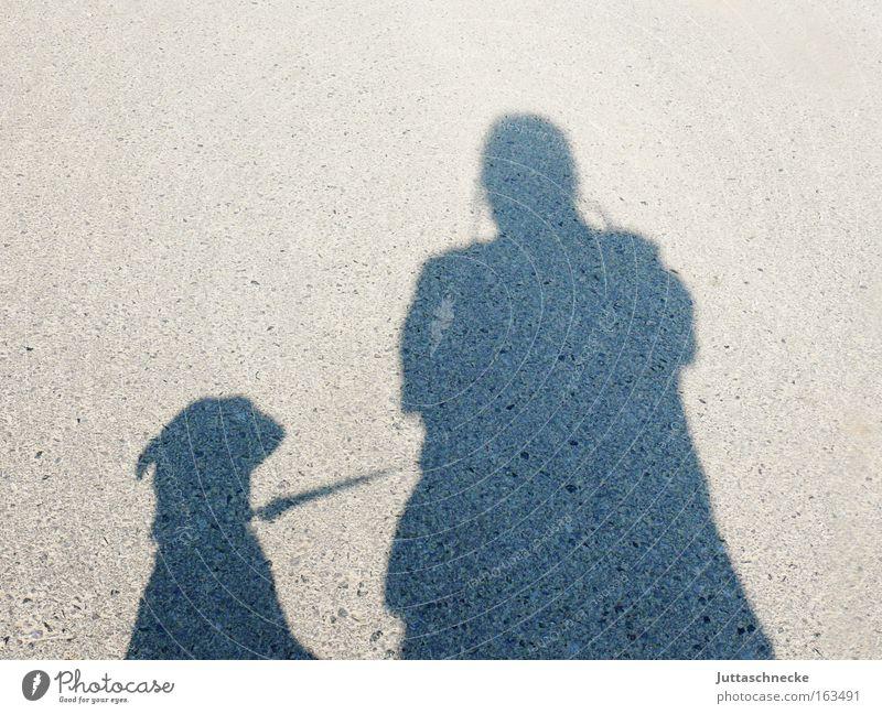 Herr und G´scher Schatten Silhouette Hund Mensch Gassi gehen Spaziergang angeleint auslaufen Kommunizieren Säugetier Seil paarweise Doppelpack Tierhalter