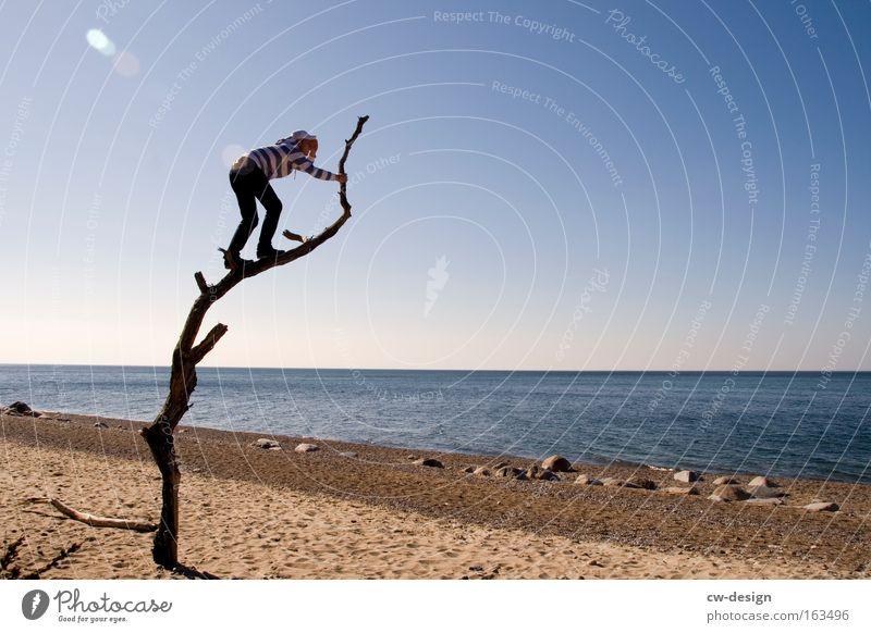 Die Aussichten für die kommende Woche Sommer Strand Meer Mensch Mann Erwachsene Jugendliche Umwelt Natur Landschaft Sand Wasser Wolkenloser Himmel Sonnenlicht