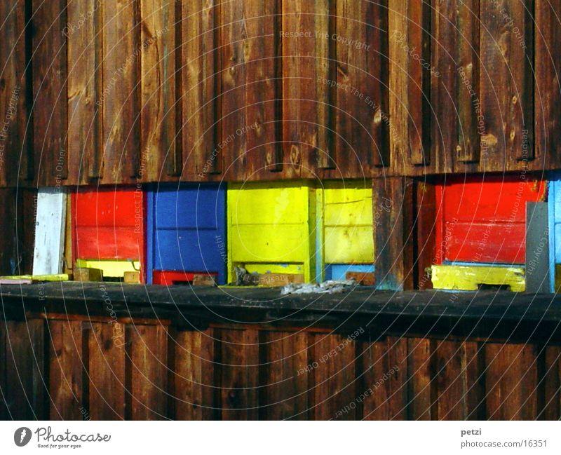 Bienenhaus Farbe Holzhaus