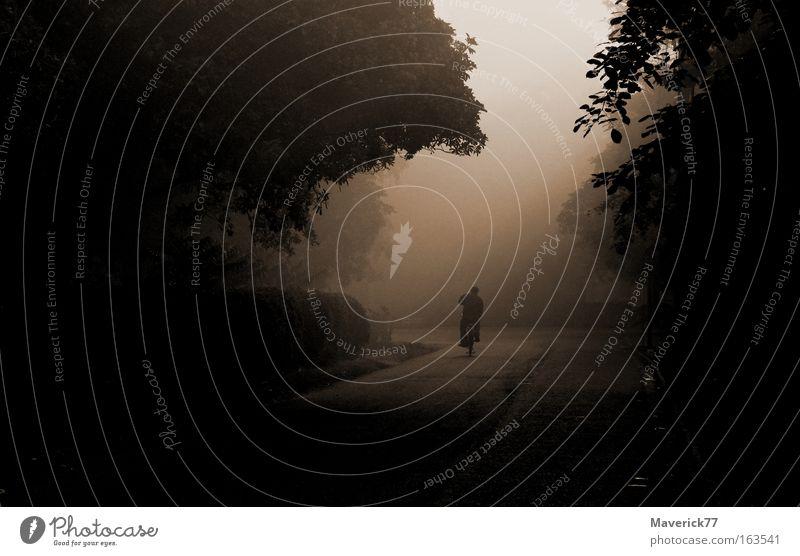 Natur Winter Einsamkeit Straße dunkel träumen Fahrrad Nebel Erfolg frei Hoffnung Ziel Leidenschaft Fahrradfahren Optimismus Ausdauer