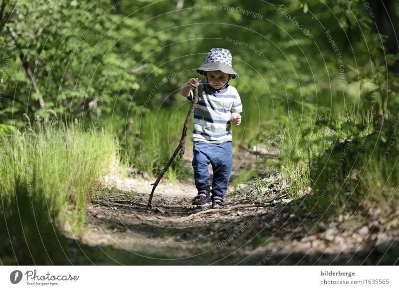 Wanderer Kind Ferien & Urlaub & Reisen Sommer Baum Landschaft Freude Wald Umwelt Frühling Gefühle Bewegung Spielen Glück wandern Lebensfreude Abenteuer