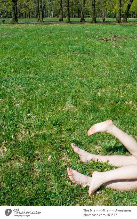 schmetterlinge im park Mensch Natur Jugendliche Umwelt Liebe Wiese nackt Beine Junge Frau Park Zusammensein Junger Mann liegen maskulin frisch Fröhlichkeit
