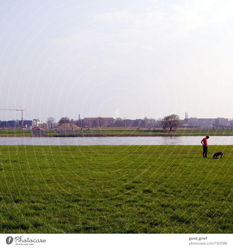 suche [DD|Apr|09] Dresden Wasser Elbe Fluss Wiese Gras Hund Mensch Mann Kran tia view7 Sommer Frühling usertreffen