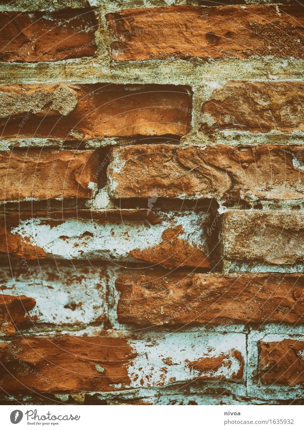 Backstein 3 Haus Bauwerk Gebäude Architektur Mauer Wand Fassade Linie bauen liegen fest braun orange rot Einigkeit Zusammensein einzigartig Farbfoto
