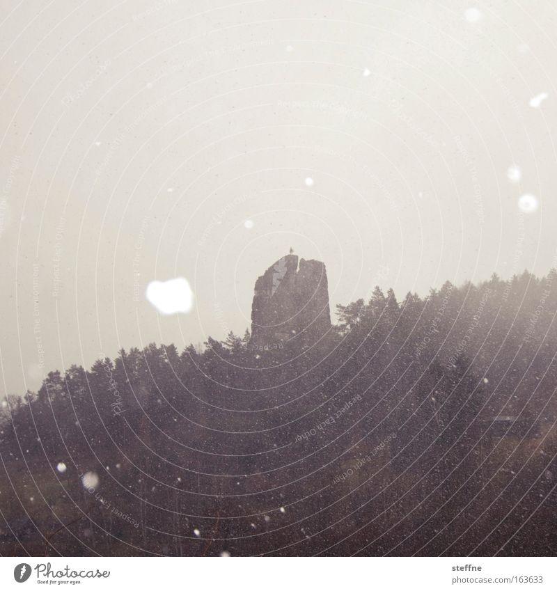 April April, macht was er will Natur Baum Winter Wald Schnee Berge u. Gebirge Schneefall Traurigkeit Landschaft Felsen Klima Idylle Klimawandel schlechtes Wetter Hagel Elbsandsteingebirge