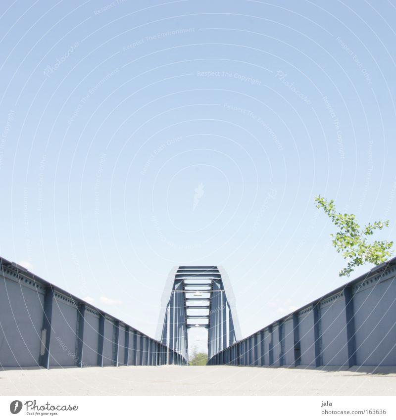 blue gate bridge Himmel blau Baum Pflanze Architektur Wege & Pfade frei modern groß Klima Brücke Sträucher Spaziergang Fluss Bauwerk Flussufer