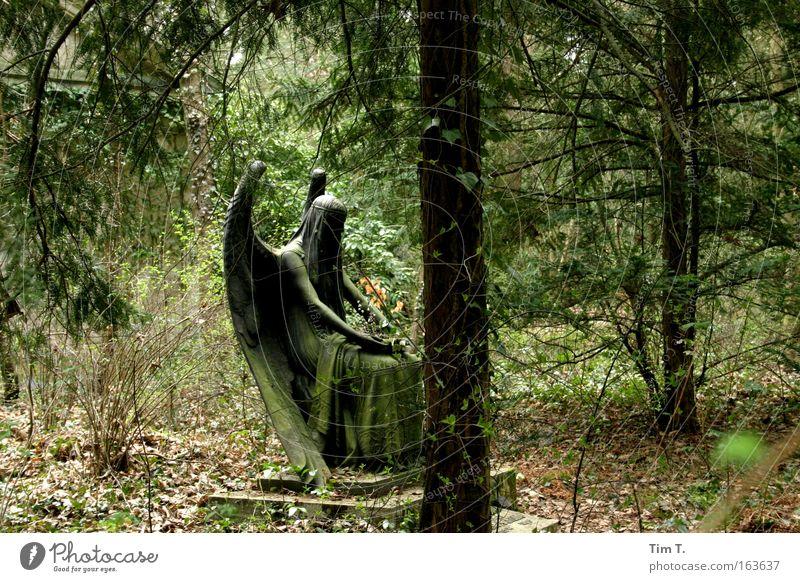 Schwarzer Engel Natur Pflanze Wald Landschaft Garten Park Kunst Erde Kirche Engel Trauer Zeichen Schönes Wetter Denkmal Skulptur Sehenswürdigkeit