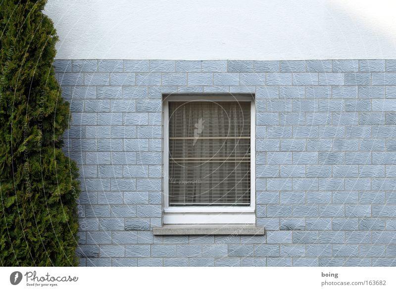 """Titelassistent schlägt """"Fenster"""" vor Haus Dorf Vorgarten Vorhang Scheinzypresse Fensterbrett Fliesen u. Kacheln Pflanze"""