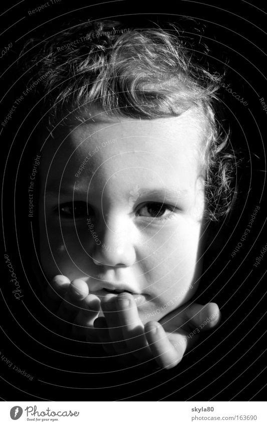 Zuckersüss Kind Kleinkind süß Junge Gesicht Haare & Frisuren Blick Kindheit Locken Sonnenlicht Zufriedenheit Familie & Verwandtschaft Glück Blick in die Kamera