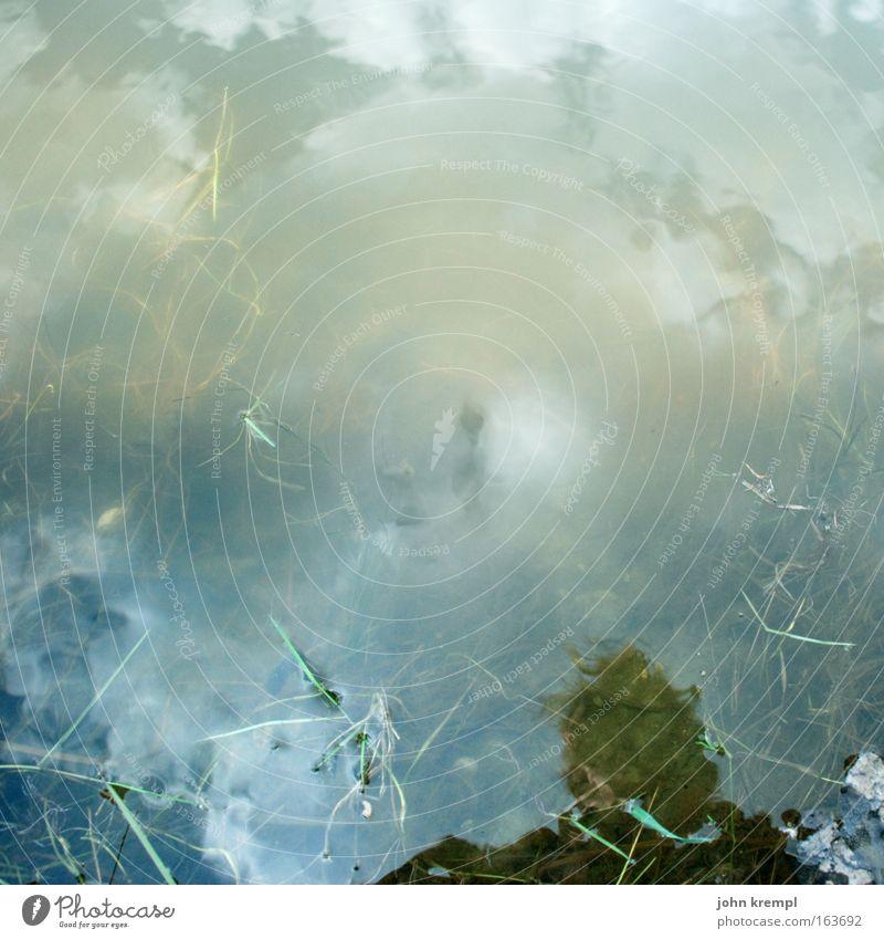 gedankensuppe Himmel Wasser grün Wolken gelb grau See braun dreckig Reflexion & Spiegelung außergewöhnlich Idylle gruselig Seeufer silber Teich