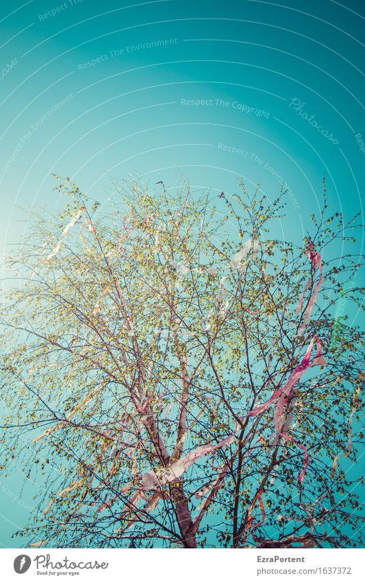Himmel Mai Baum Geflatter Umwelt Natur Wolkenloser Himmel Sonne Frühling ästhetisch hell blau grün rot Maibaum Lametta Dekoration & Verzierung Girlande flattern