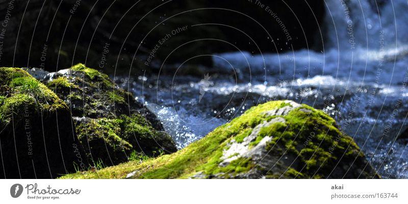 Bach Wasser grün blau schwarz Wald Stein groß Felsen Fluss weich Pflanze Moos Wasserfall Panorama (Bildformat) Schwarzwald