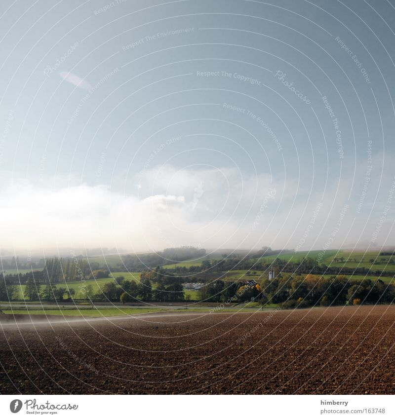 good morning Himmel Natur blau grün schön Pflanze Einsamkeit Wolken ruhig Erholung Umwelt Landschaft Wiese Freiheit braun Wetter