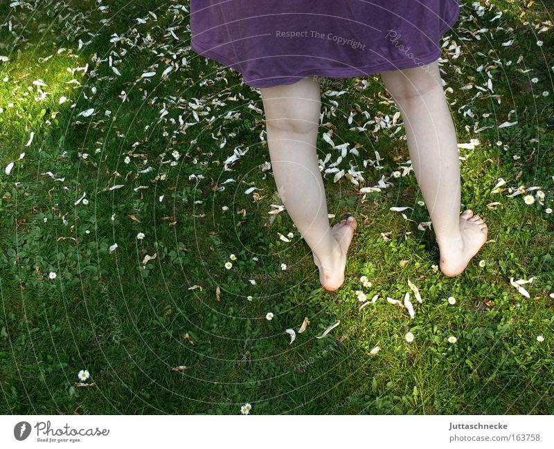 Madame Butterfly Frau Mensch Natur Jugendliche Sommer Freude Erwachsene Erholung feminin Wiese Gras Garten Frühling Beine Park