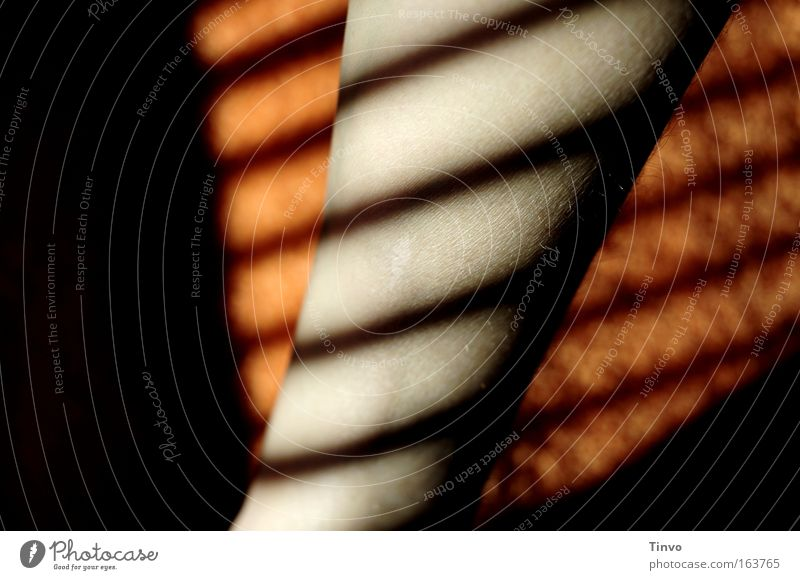 Good Day Sunshine Farbfoto Innenaufnahme Nahaufnahme Detailaufnahme Muster Textfreiraum links Morgen Schatten Kontrast Sonnenlicht Schwache Tiefenschärfe Haut