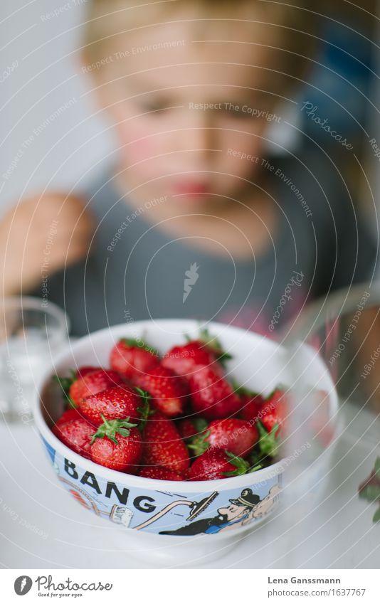Bang! Erdbeeren! Mensch Sommer Gesunde Ernährung rot Junge Gesundheit Denken Frucht blond warten genießen Lebensfreude beobachten süß niedlich Neugier