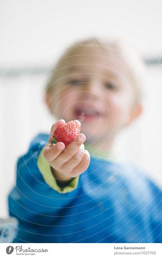 Erbeerzeit!! Mensch Kind blau rot Freude Essen Junge Gesundheit Glück Lebensmittel Frucht blond Geburtstag Fröhlichkeit Lebensfreude Warmherzigkeit