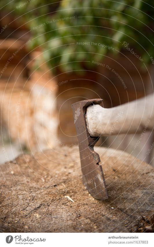 Holzhacke steckt im Baumstamm Pflanze Sommer Blatt Haus Umwelt Garten Fassade Arbeit & Erwerbstätigkeit Freizeit & Hobby Energiewirtschaft authentisch
