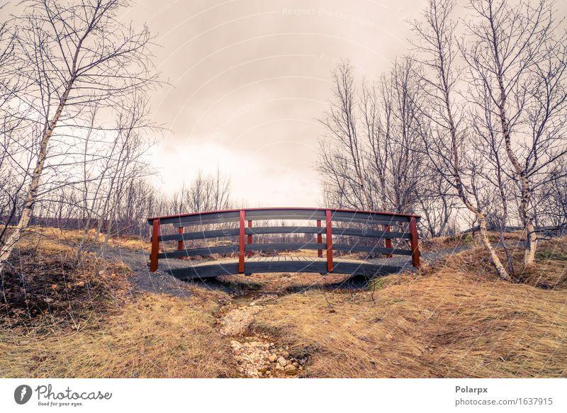 Trockener Flussstrom mit einer kleinen eleganten Brücke Himmel Natur schön grün Baum Landschaft Wolken ruhig dunkel Umwelt Architektur Herbst Wege & Pfade