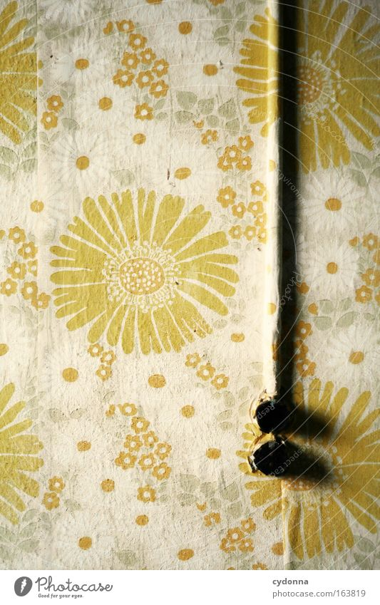 [DD|Apr|09] FlowerPower Pflanze Haus gelb Leben Wand Traurigkeit Mauer Energiewirtschaft Elektrizität ästhetisch retro Zukunft kaputt Dekoration & Verzierung
