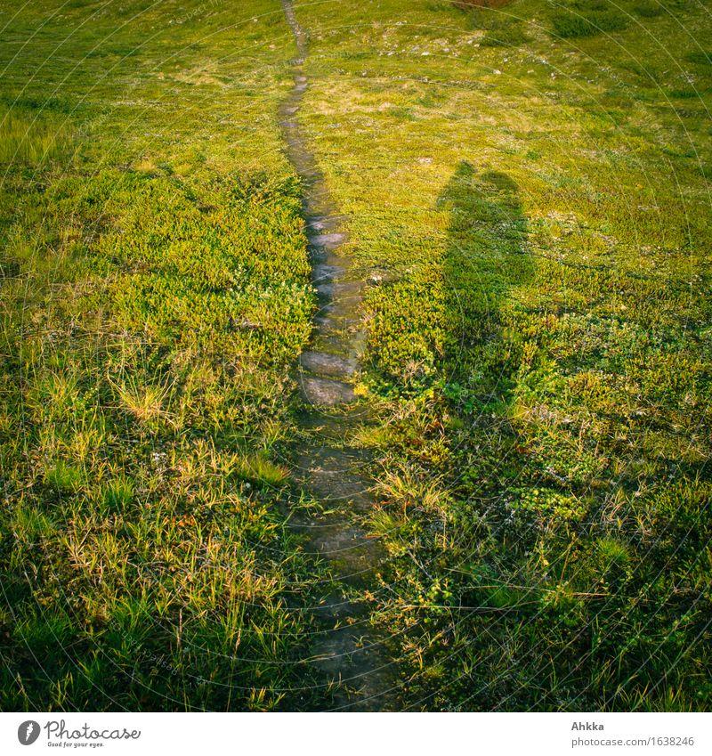 Irrwege II Ferien & Urlaub & Reisen Ausflug Abenteuer Freiheit Berge u. Gebirge wandern Mensch 1 Natur Landschaft Gras Fußgänger Wege & Pfade grün Beginn