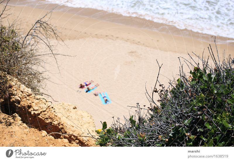 Strandtag Mensch Natur Ferien & Urlaub & Reisen Pflanze Sommer Meer Erholung Landschaft Reisefotografie Gefühle Küste Schwimmen & Baden Stimmung