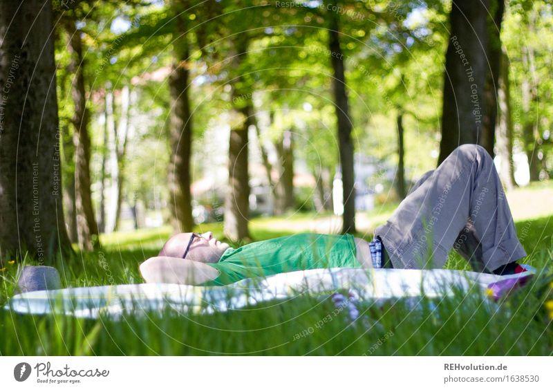 auftanken Mensch maskulin Junger Mann Jugendliche 1 18-30 Jahre Erwachsene Umwelt Natur Pflanze Baum Gras Park Wiese Wald liegen grün Freude Glück Zufriedenheit