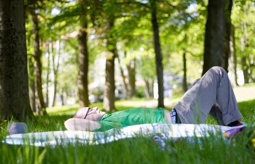 auftanken Mensch Natur Jugendliche Pflanze grün Baum Junger Mann Erholung ruhig Freude Wald 18-30 Jahre Erwachsene Umwelt Wiese Gras