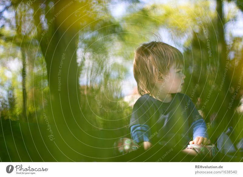 picknick Mensch Kind Natur Pflanze grün Sommer Baum Erholung Landschaft Freude Umwelt Wiese Junge Gesundheit Glück Freiheit
