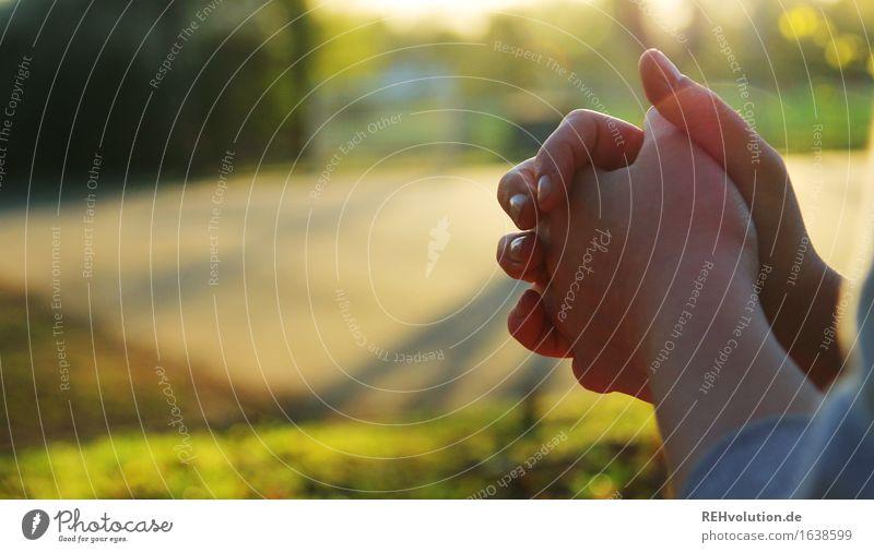 beten feminin Hand 1 Mensch Umwelt Natur Landschaft Park Wiese stark grün selbstbewußt friedlich Güte Selbstlosigkeit Menschlichkeit Hilfsbereitschaft dankbar