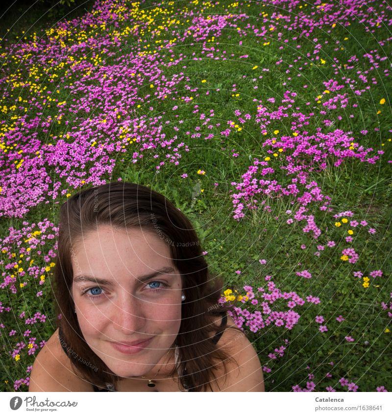 Blumenwiese feminin Junge Frau Jugendliche Kopf 1 Mensch 18-30 Jahre Erwachsene Natur Pflanze Blüte Kleeblüte Blühend Lächeln verblüht Fröhlichkeit frisch schön