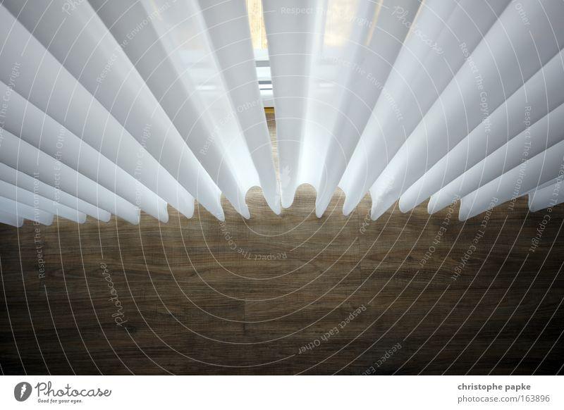 Behind the curtain Fenster hell Wohnung Perspektive Bodenbelag Dekoration & Verzierung Schutz Innenarchitektur entdecken Wohnzimmer Vorhang Gardine Holzfußboden