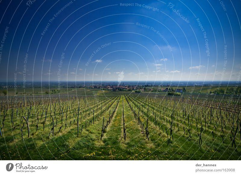 Welch weite... Himmel Natur blau grün Pflanze Wolken ruhig Berge u. Gebirge groß wandern frisch historisch Reichtum Alkohol Wolkenloser Himmel harmonisch